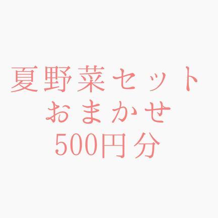 ミヤハラ農園 夏野菜500円分セット【ミヤハラ農園】 種類、量、完全におまかせ(500円分位)
