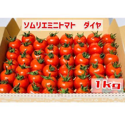 畑の宝石 【塩トマトのようなフルーツトマト】ソムリエミニトマト ダイヤ1kg 1kg
