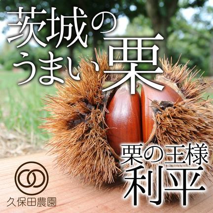 久保田農園 茨城のうまい栗(利平) 約3kg  3kg