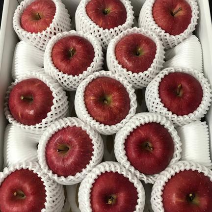 ケイエス青果 青森県産りんご「サンふじ」贈答用 約5kg 5kg