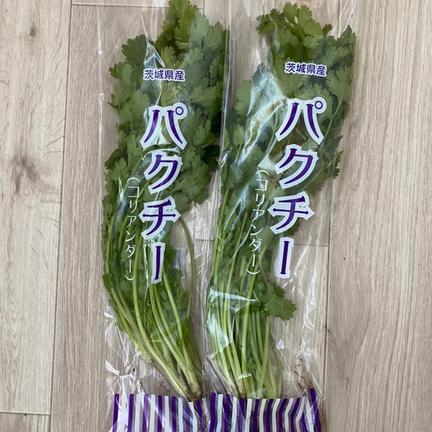 JIYURI FARM 安心、安全、無農薬の朝獲れパクチー(*☻-☻*) 200g