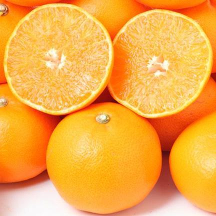 瀬戸内ABFARM 柑橘の大トロ『せとか』(ご家庭用) 3㌔