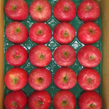 サンふじ20玉5㎏ 5㎏ 果物や野菜などの宅配食材通販産地直送アウル