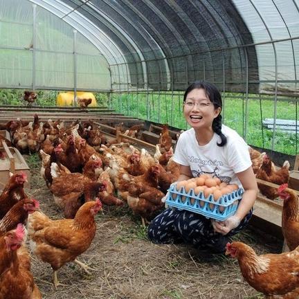 ほんま農園 平飼い有精卵「ほんまの卵」40個 10個入り4パック(1パック600g以上)