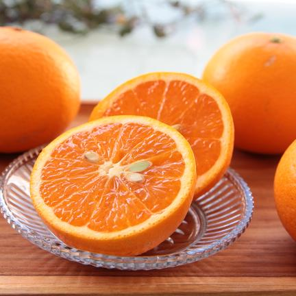 主井農園 清見オレンジ ご家庭用 約3k 果物や野菜などの宅配食材通販産地直送アウル