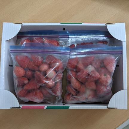ぶらっく農園 日時指定可※冷凍いちごちゃん2kg※ 群馬県産『やよいひめ』 500g×4袋