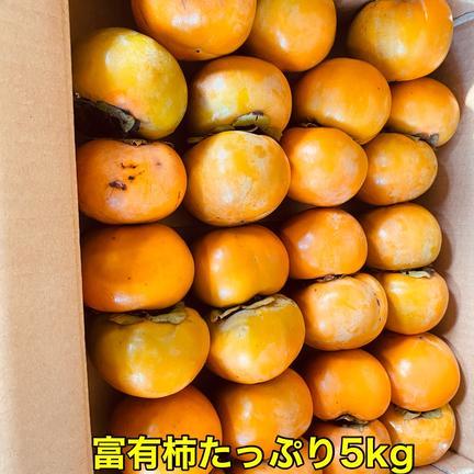 ご家庭用 富有柿Sサイズ詰め合わせ 5kg 果物や野菜などの宅配食材通販産地直送アウル