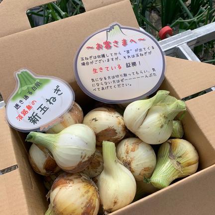 hopewill淡路島 ❣️訳ありかも5kg‼️玉ねぎ大国淡路島からの新玉ねぎ‼️特別栽培農産物 訳あり新玉ねぎ5kg