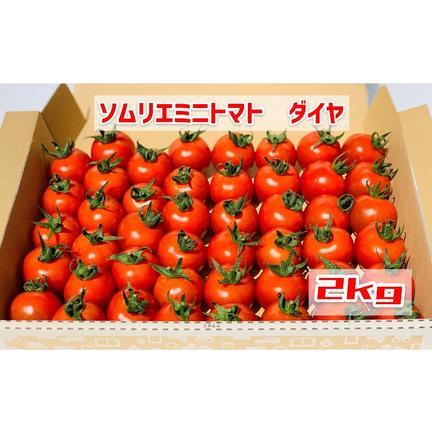 畑の宝石 【塩トマトのようなフルーツトマト】ソムリエミニトマト ダイヤ2kg 2kg