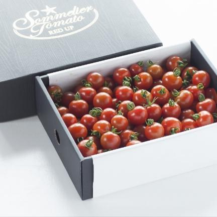 畑の宝石 ④【超希少】ソムリエミニトマト プラチナ3kg 3kg