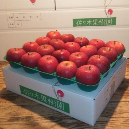 【自家用小玉】サンふじ5kg(20玉) 約5kg(20玉) 果物や野菜などの宅配食材通販産地直送アウル