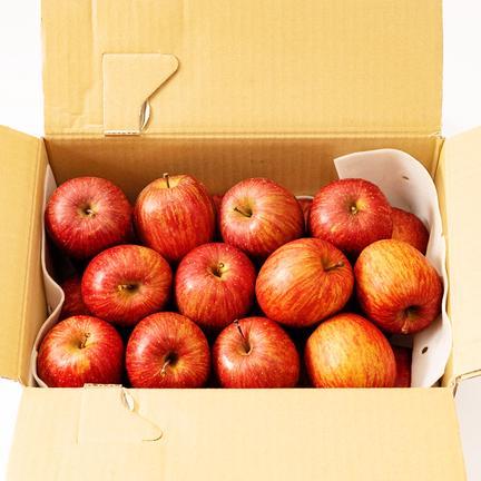 【お試し⑩】濃厚サンふじ小玉約10キロ 約10キロ 果物や野菜などの宅配食材通販産地直送アウル