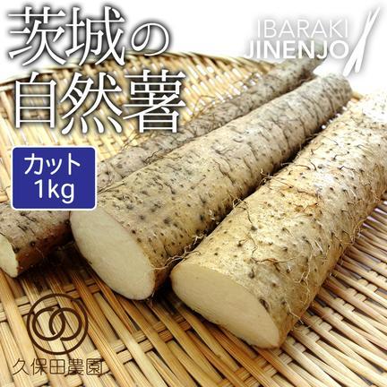 久保田農園 茨城の自然薯 カット 約1kg 約1kg