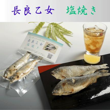 (有)美濃養魚場 長良乙女の塩焼き(4パックセット) 4パック(各2尾入り)