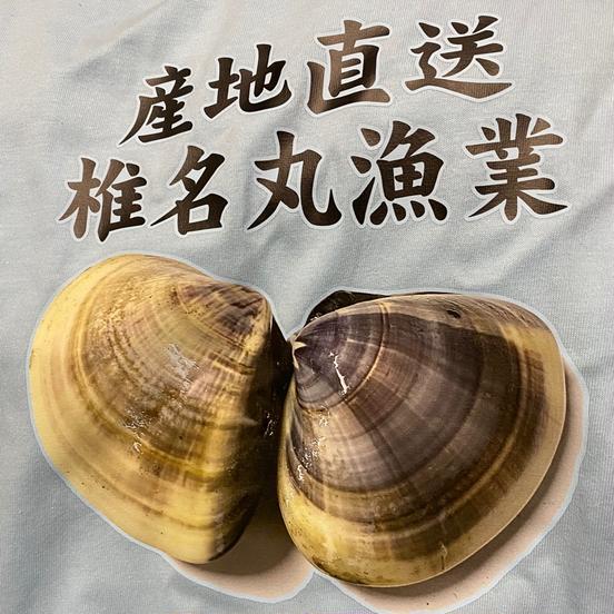 椎名丸漁業 匝瑳市