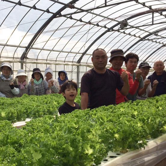農業生産法人ビッグヤード株式会社 磐田市