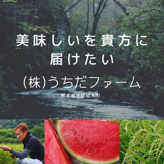 (株)うちだファーム 熊本市