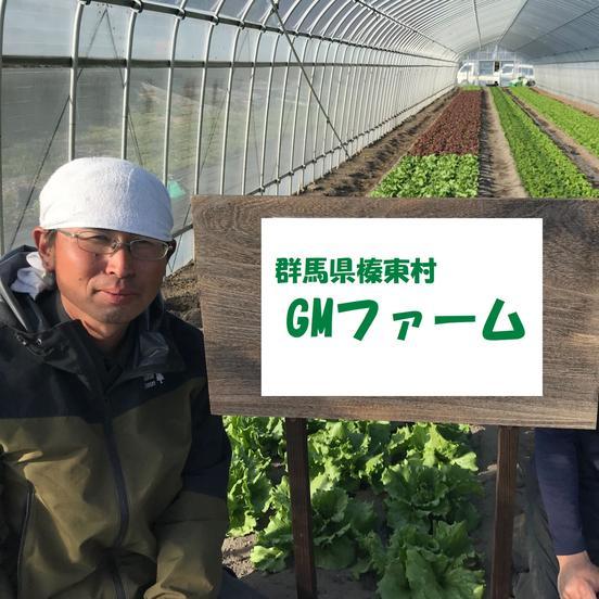 GMファーム 榛東村