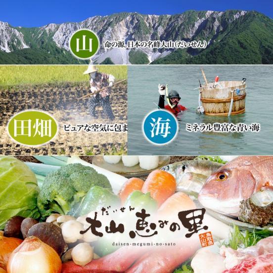 大山恵みの里公社(道の駅大山恵みの里)の食材を見る 道の駅の食材も産地直送通販アウルで