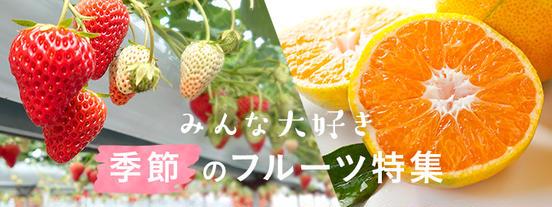 いちごやみかんも。注目!季節のフルーツ