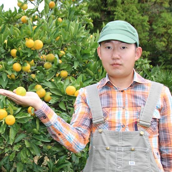しらゆき農園 有田川町