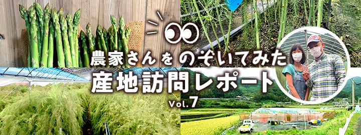 産直アウルの産地訪問レポート!今回の食材は長崎県のアスパラガス