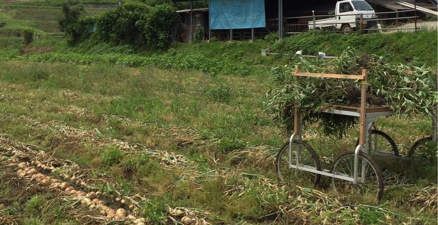 カツラギ農園 淡路市