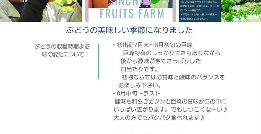 信ちゃん果樹園 朝倉市