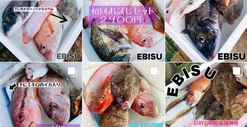 EBISU☆FISHERY 今治市
