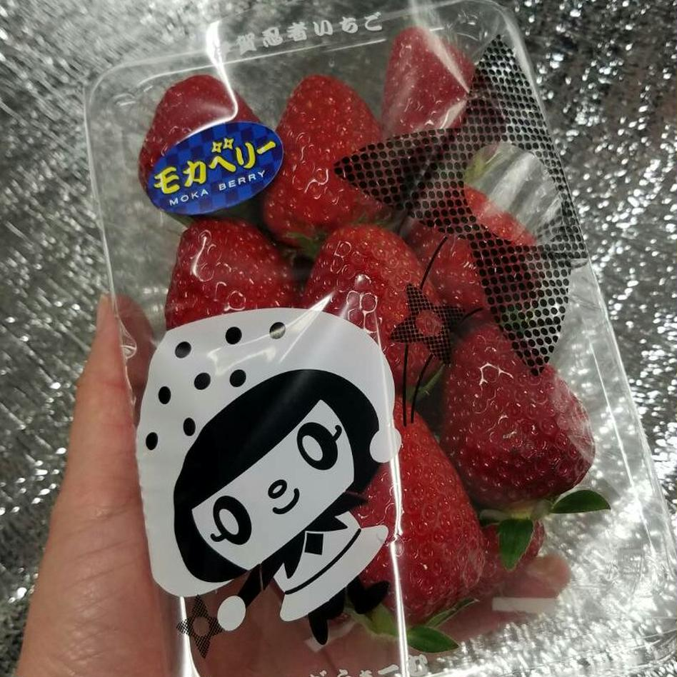 【特価価格】いろいろなサイズ『品種3種類』 苺 イチゴ ※簡易な梱包のため傷む可能性あり 一箱 苺のみ約900g以上【約230g×4パック】 果物/いちご通販