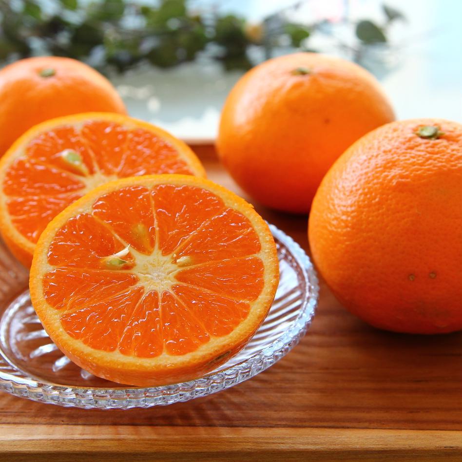 カラマンダリン、セミノール詰め合わせ5k(ご家庭用) 5kg 果物/柑橘類通販