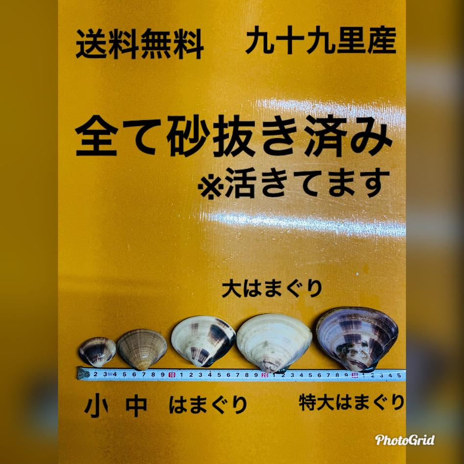 九十九里産天然 小はまぐり4キロ 4キロ 魚介類/蛤通販
