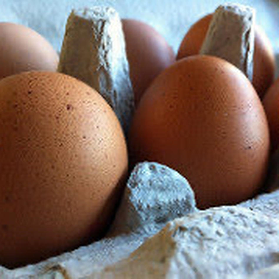【枯草菌育ちの赤たまご50個】オレンジ色が鮮やか🎵濃厚な黄身🍳 50個(25個入り紙トレイで2段重ね)重量目安2.7-3.0kg 卵/鶏卵通販