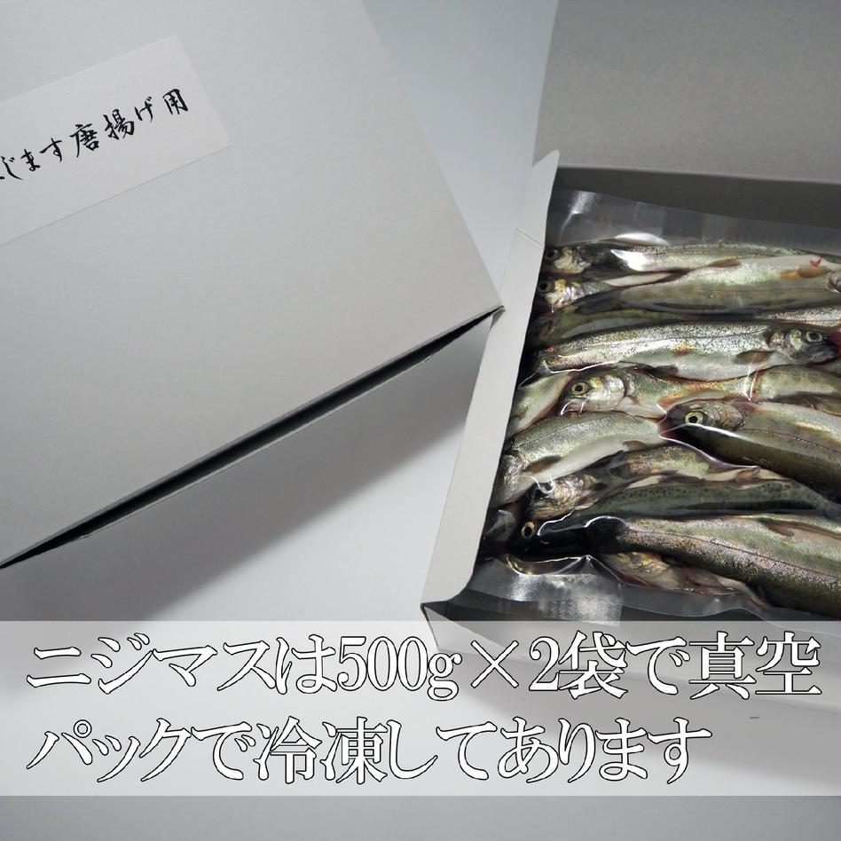 ニジマス小サイズ(唐揚げ・南蛮漬けなどに) 1パック(1キロ) 魚介類/その他魚介通販